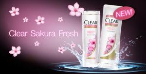 Shampoo Wangi