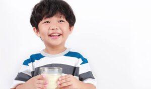 manfaat susu Dancow